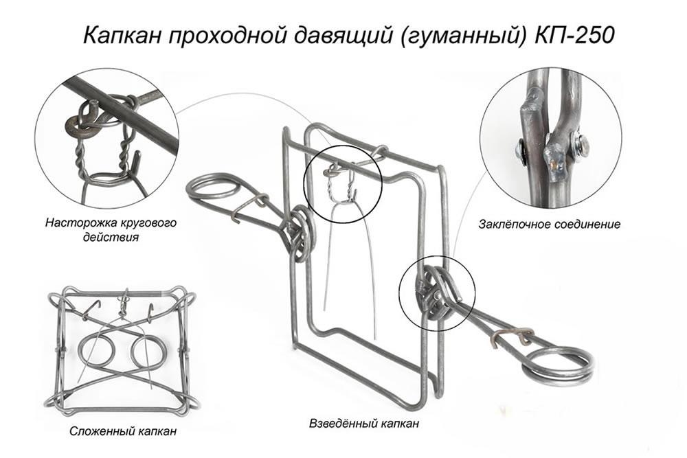 Изготовление пружины для капканов своими руками