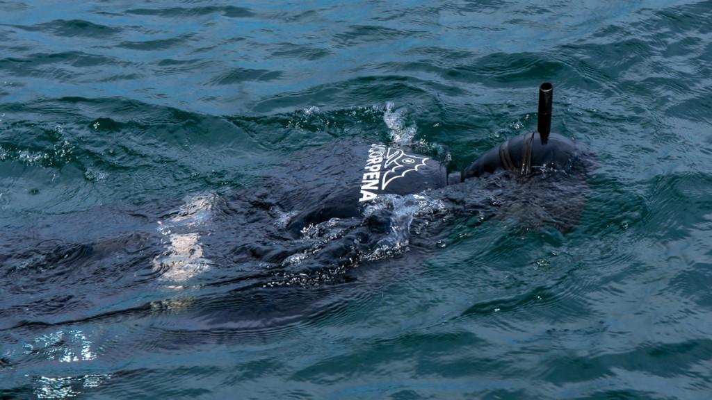 GPS используется и на подводной охоте
