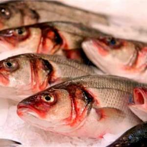 паразиты в речной рыбе опасные для человека