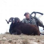 Охотник с арбалетом и снежный баран