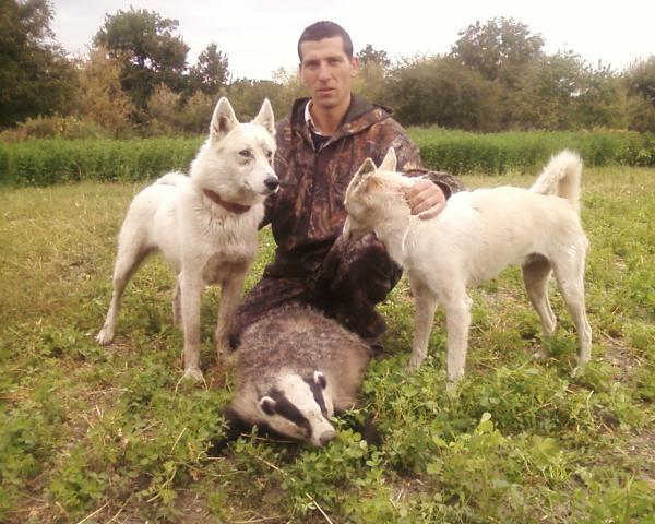 Охотник, собаки и трофей