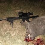 После охоты ночью