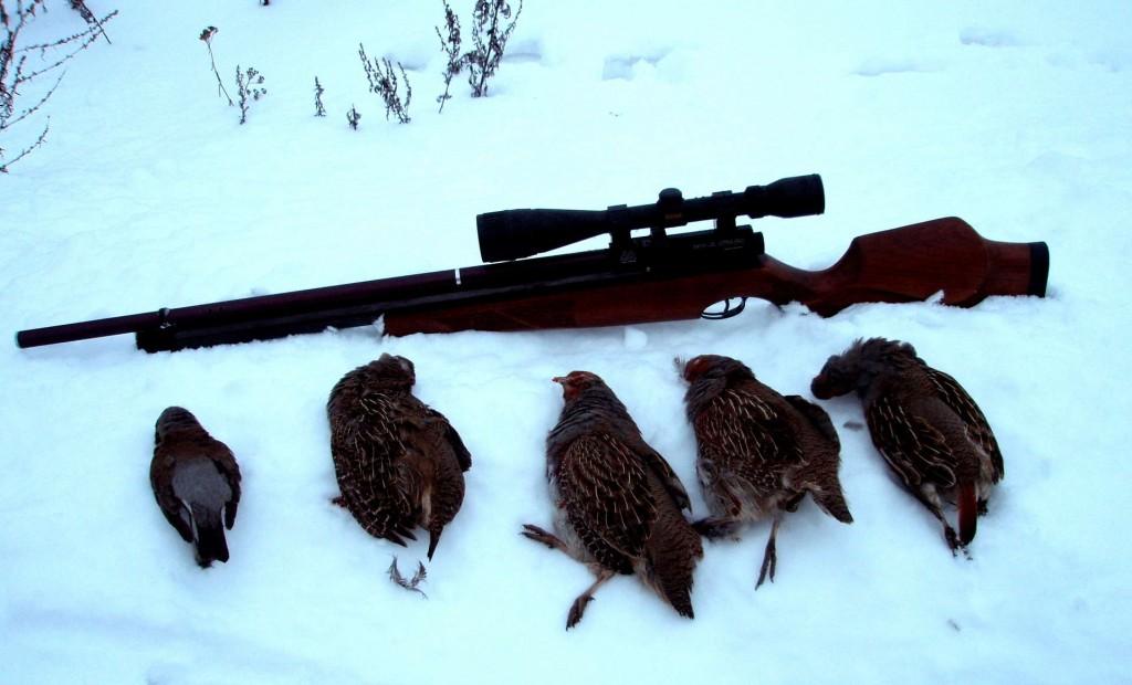 Трофеи зимней охоты