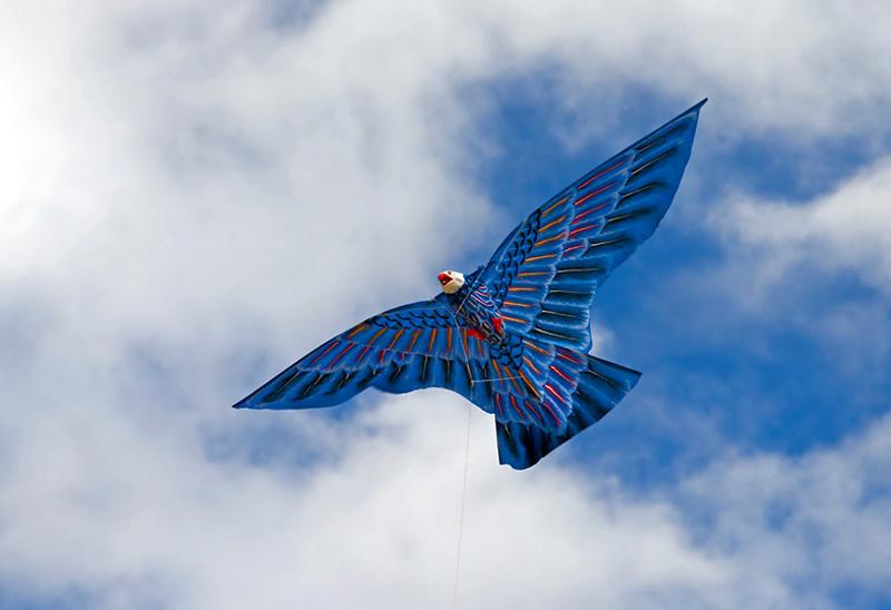 Воздушный змей для охоты на куропатку