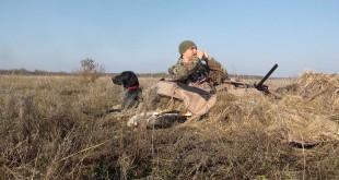 «Подманивание и охота белолобого гуся» — смотреть видео онлайн