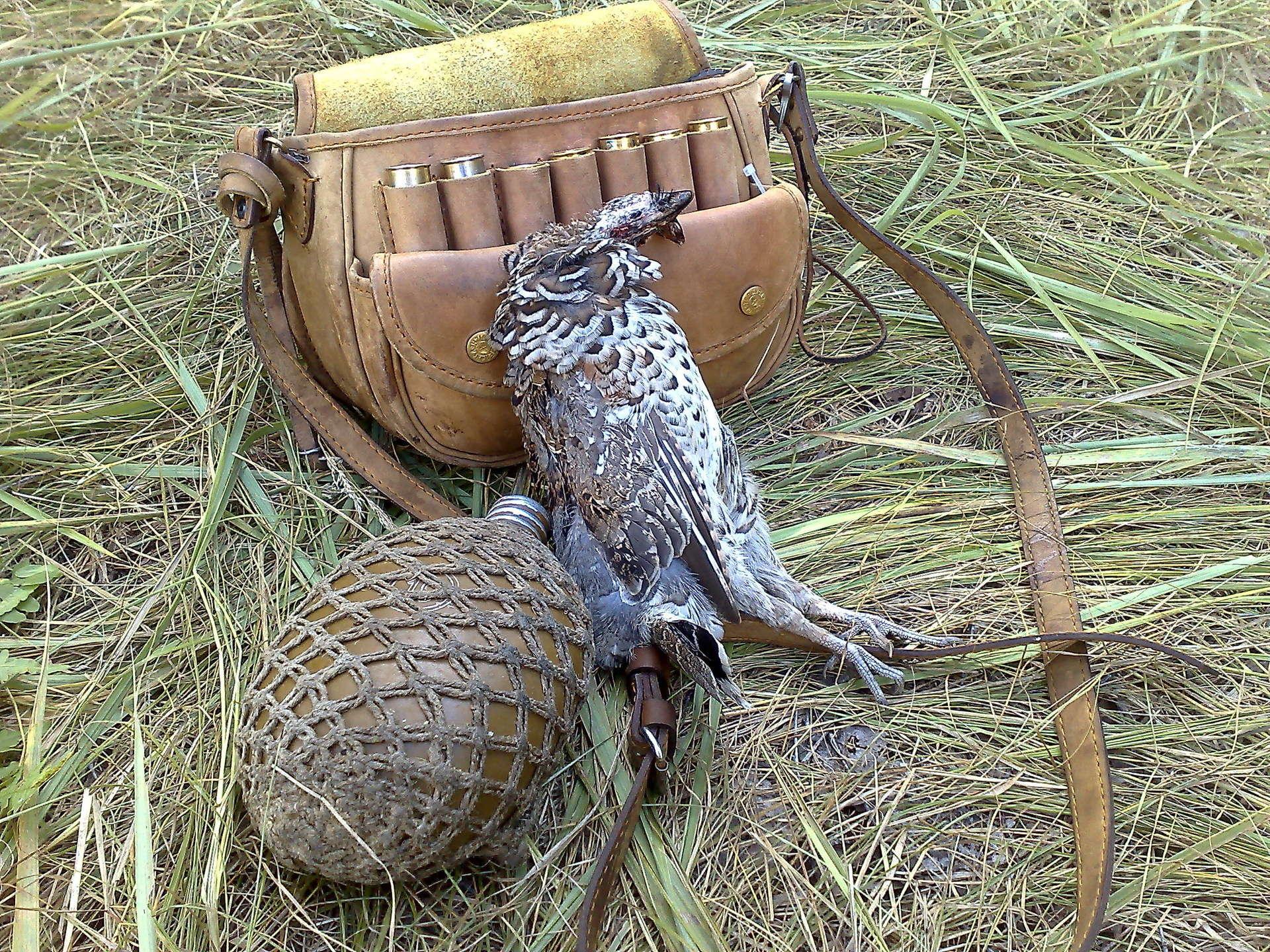 Охота на рябчиков поздней осенью смотреть видео онлайн