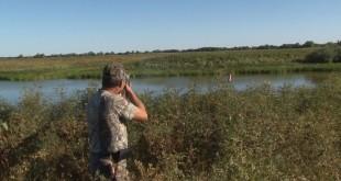Охота на утку с подхода на вылетку