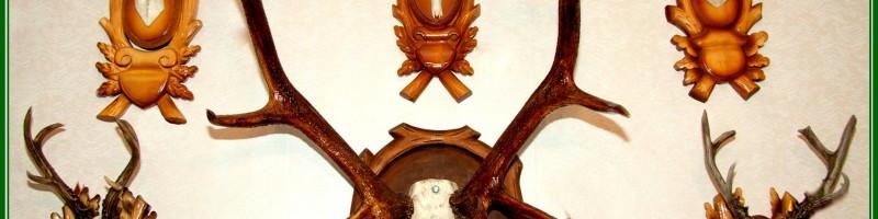Охотничьи трофеи – общая информация о трофейной охоте, тонкостях оформления трофеев, правилах оценки