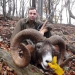 Охота в Чехии – изобилие дичи, европейские традиции и роскошные трофеи