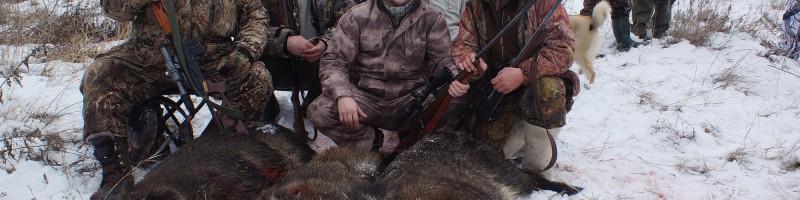 Загонная охота на оленя зимой смотреть видео онлайн