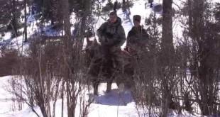 «Промысловая охота на соболя в Сибирской тайге ч-2″ —  смотреть видео