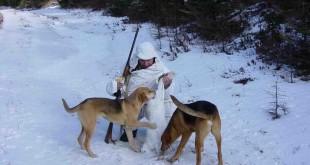 «Охота на зайца русака смотреть» — смотреть видео онлайн