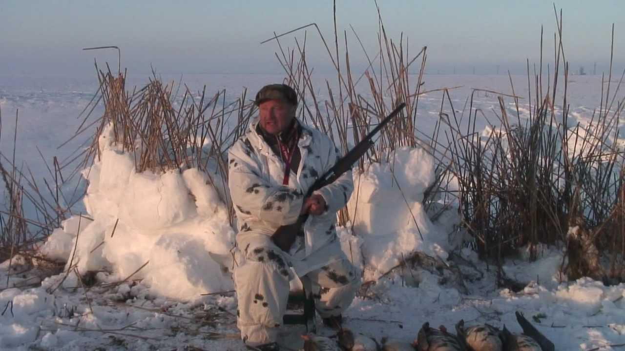 «Охота на белолобых гусей с манком (Канада)» — смотреть видео онлайн