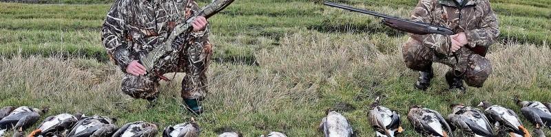 «Охота на гуся аккерманцы» — смотреть видео онлайн