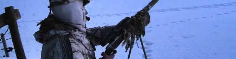 «Охота на лису с манком» смотреть видео онлайн
