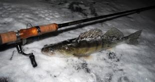Рыбалка зимой – советы опытного рыбака как поймать рыбку и сделать зимнюю рыбную ловлю  максимально безопасной