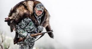 Где, как в 2015 году можно получить лицензию на охоту
