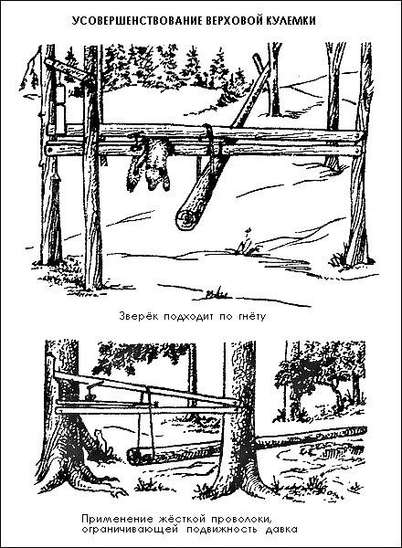 Как сделать ловушки на соболя