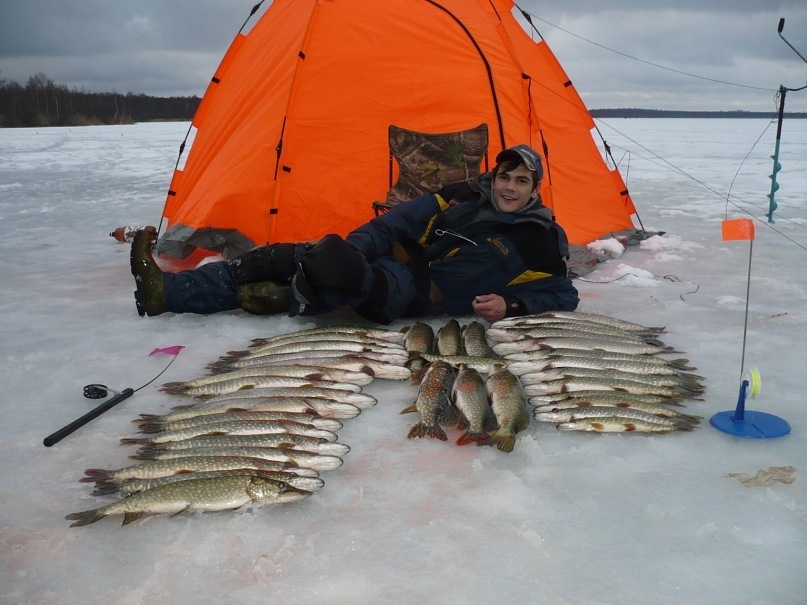 рыбалка на флажки снасть
