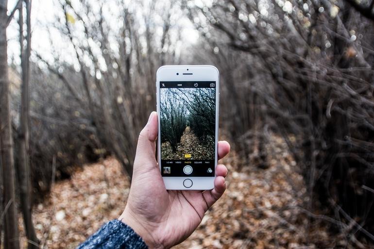 Использование мобильника в лесу