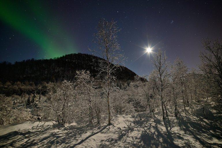 Полярная звезда. Хороший ночной ориентир