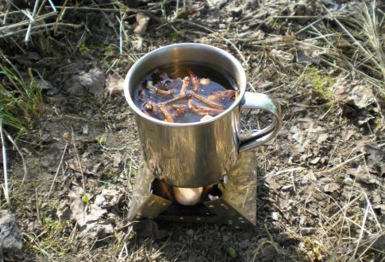 Питательные источники в лесу