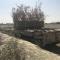 В Сирии заметили танк с необычной защитой и маскировкой