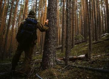 Правила выживания, если заблудился в лесу без ничего