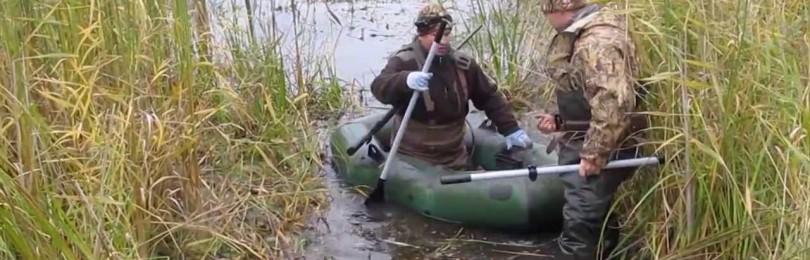 Охота на утку и водоплавающую дичь со спаниелем – интересная и добычливая