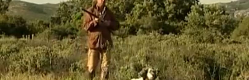 """""""Охота на зайца в камыше с собакой"""" смотреть видео онлайн"""