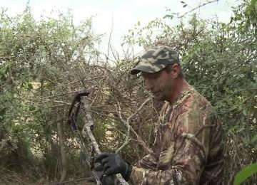 Охота на голубя смотреть видео онлайн
