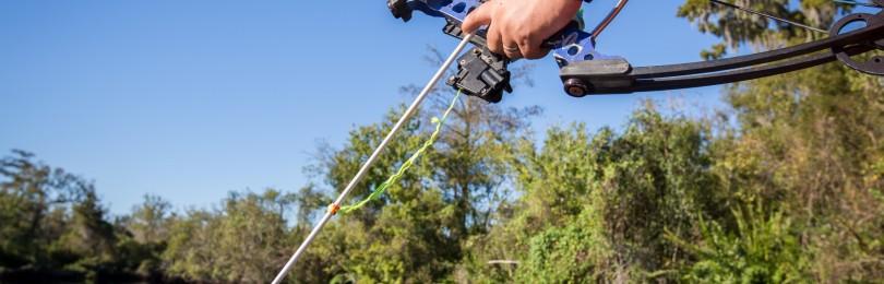 Охота на голубя с луком!!! смотреть видео онлайн