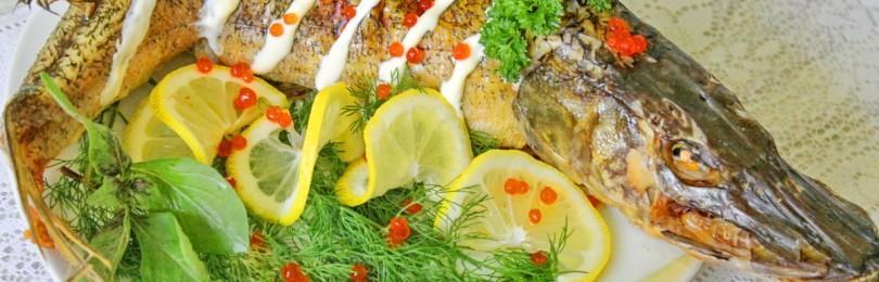 Вкусные и оригинальные домашние рецепты блюд из щуки