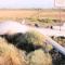 Теперь изучим: российские средства РЭБ посадили американский дрон без повреждений