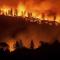США рассказали правду о пожарах в Сибири
