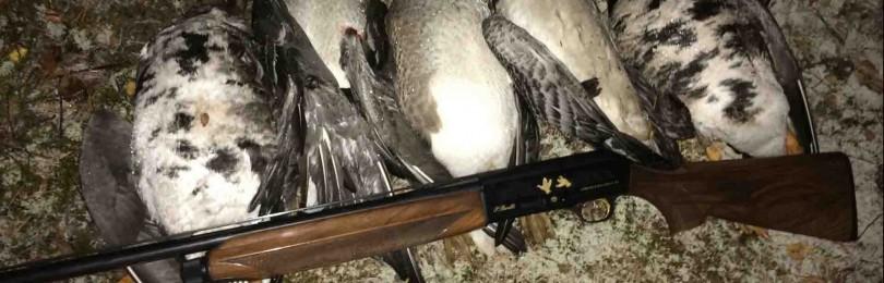 «Охота на гуся на болоте» — смотреть видео онлайн