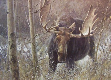 Охота на лося на реву (охота на вабу)