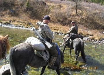 Охотничьи туры на Алтай – организация, проведение, трофеи, виды охоты, цены