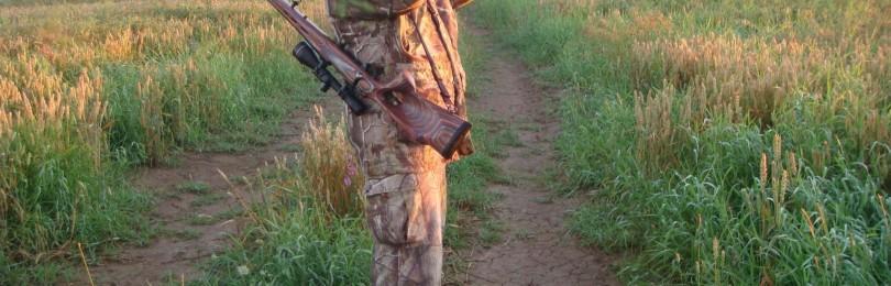 Оружие и боеприпасы для охоты на косулю – особенности выбора и снаряжения патронов