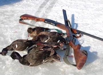 «Осенняя охота на уток » — смотреть видео онлайн
