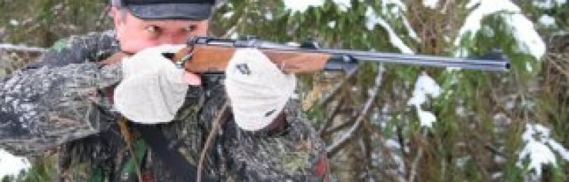 Правила прицельной стрельбы на охоте