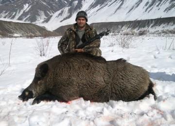 """""""Охота на кабана 2011"""" смотреть видео онлайн"""