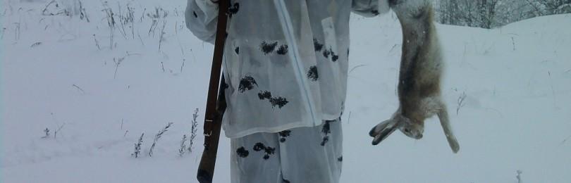 Зимняя охота на зайца с русскими гончими