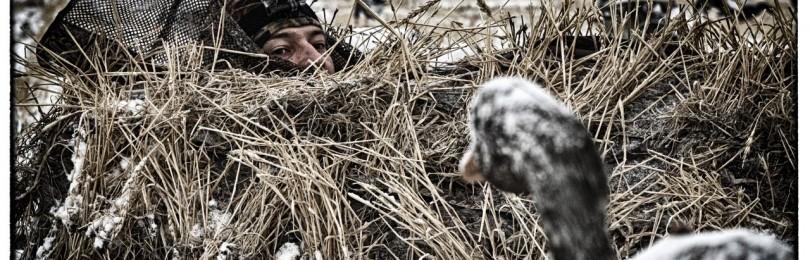 """""""Охота на гуся в украине"""" – смотреть видео онлайн"""