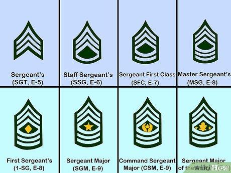 звания в армии сша по возрастанию