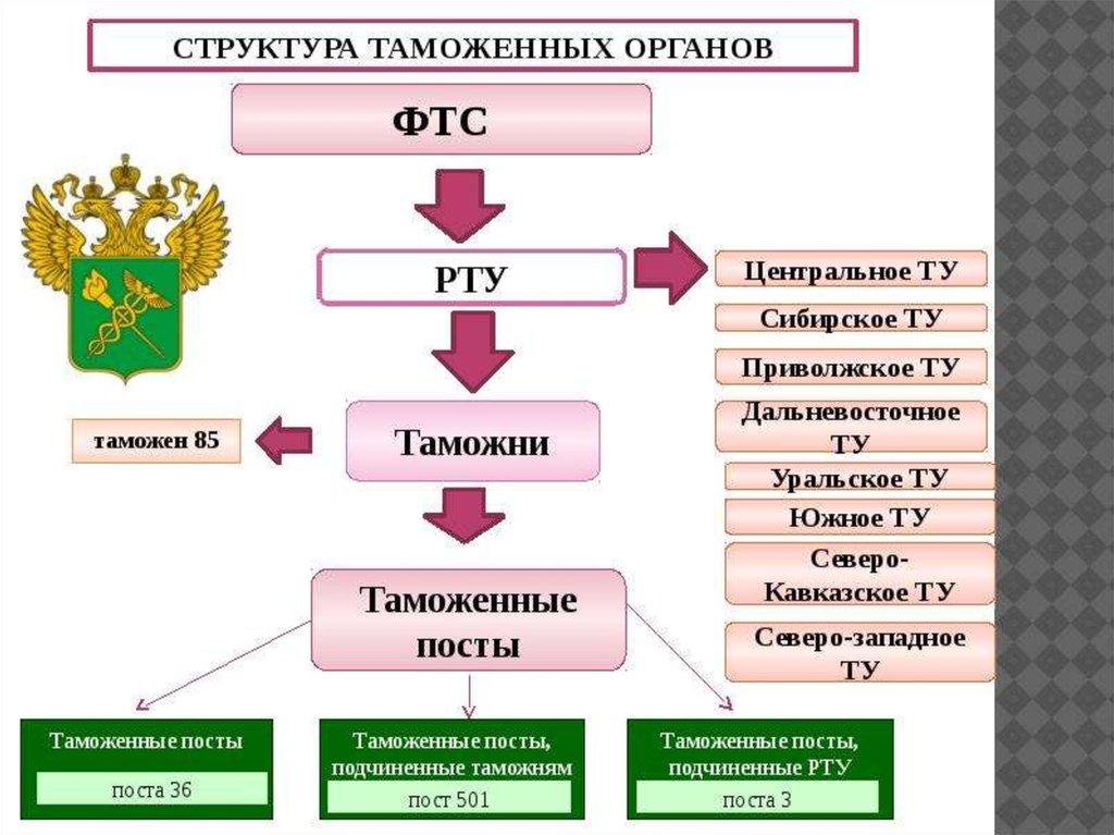 структура таможенных органов рф