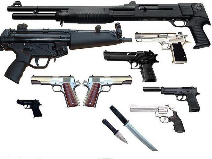 правила хранения охотничьего оружия и боеприпасов дома