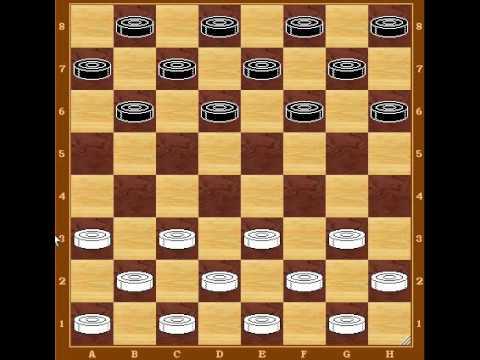 родина шашек