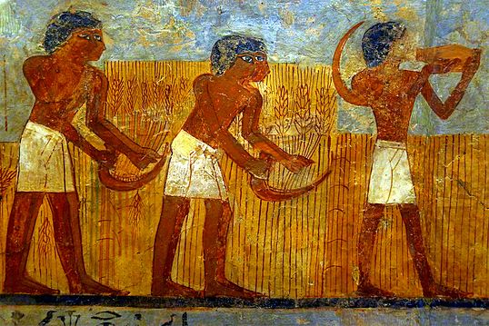 одежда египтян в древности название