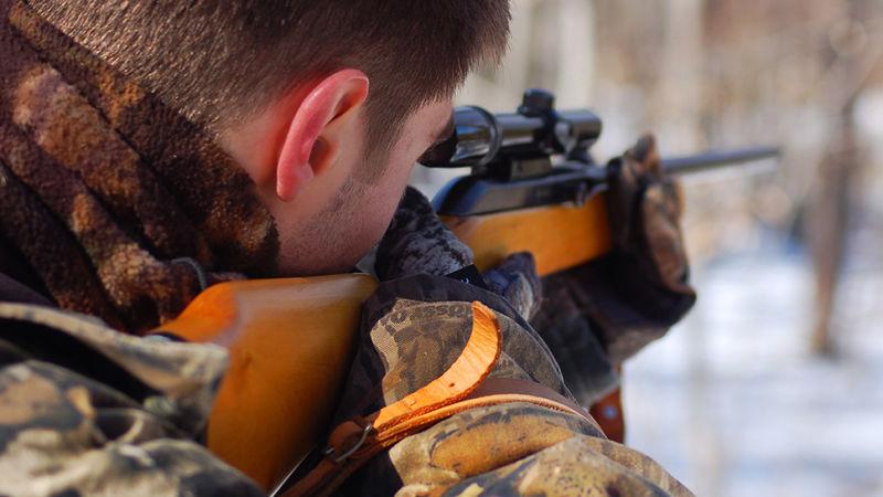 карабин ружье фото